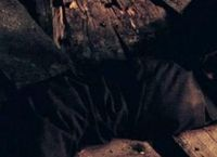 Cover Les_meilleurs_films_sur_le_satanisme