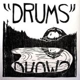 Pochette The Drums From Mt. Eerie (EP)