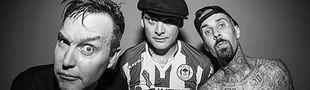 Cover Les meilleurs albums de pop punk