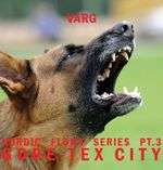 Pochette Nordic Flora Series Pt. 3: Gore-Tex City