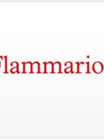 Logo Flammarion