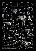 Couverture Evolution