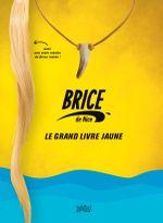 Couverture Brice, le grand livre jaune !