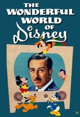 Affiche Le Monde Merveilleux de Disney