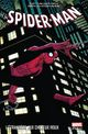 Couverture Spider-Man : L'étrangère aux Cheveux Roux