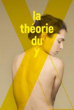 Affiche La théorie du Y