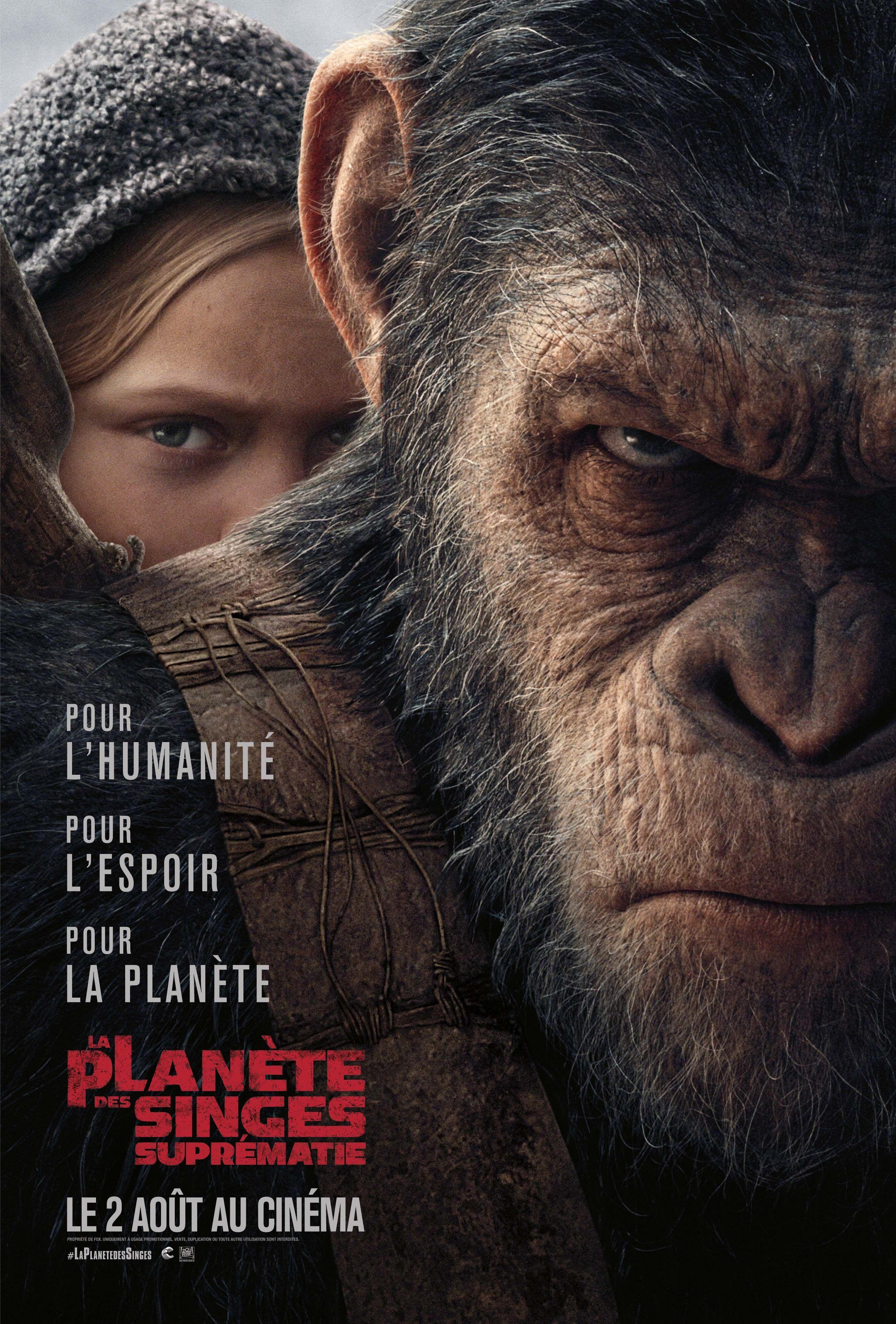 La_Planete_des_singes_Suprematie dans Les meilleurs films du Blanc Lapin