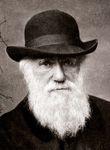 Photo Charles Darwin
