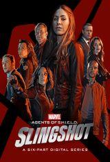 Affiche Marvel - Les Agents du S.H.I.E.L.D