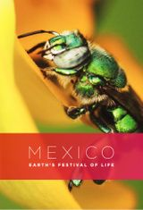 Affiche Mexico: Earth's Festival of Life