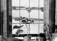 Cover Les_meilleurs_films_de_1937