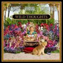 Pochette Wild Thoughts (Single)
