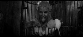 """Vidéo À VOIR : """"Tommy's Sleep"""", le court-métrage terrifiant de Die Antwoord avec Jack Black"""