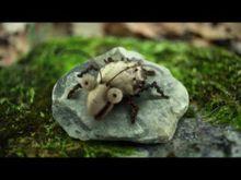 Video de Deux escargots s'en vont