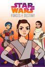 Affiche Star Wars : Forces du Destin