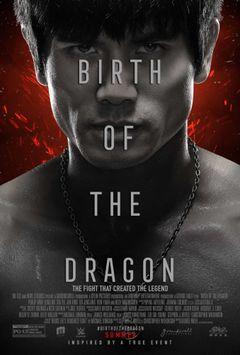Affiche Birth of the Dragon
