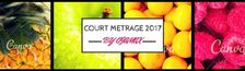 Cover 2017 ! Mon Année (Courts et Moyens Métrages)