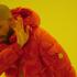 Illustration VIDÉO : Faire un titre de Drake en 4 étapes (et 2 minutes)