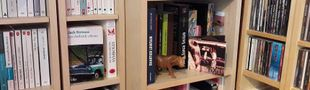 Cover Définition du mot Bibliothèque : - Collection de livres. Ex: Il a une très belle bibliothèque.
