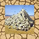 Pochette KILL YOURSELF PART XIV: The Vulture Saga (EP)