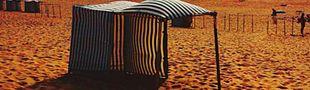 Couverture Souvenirs de la marée basse