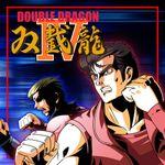 Jaquette Double Dragon IV