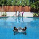 Pochette Hippopotamus