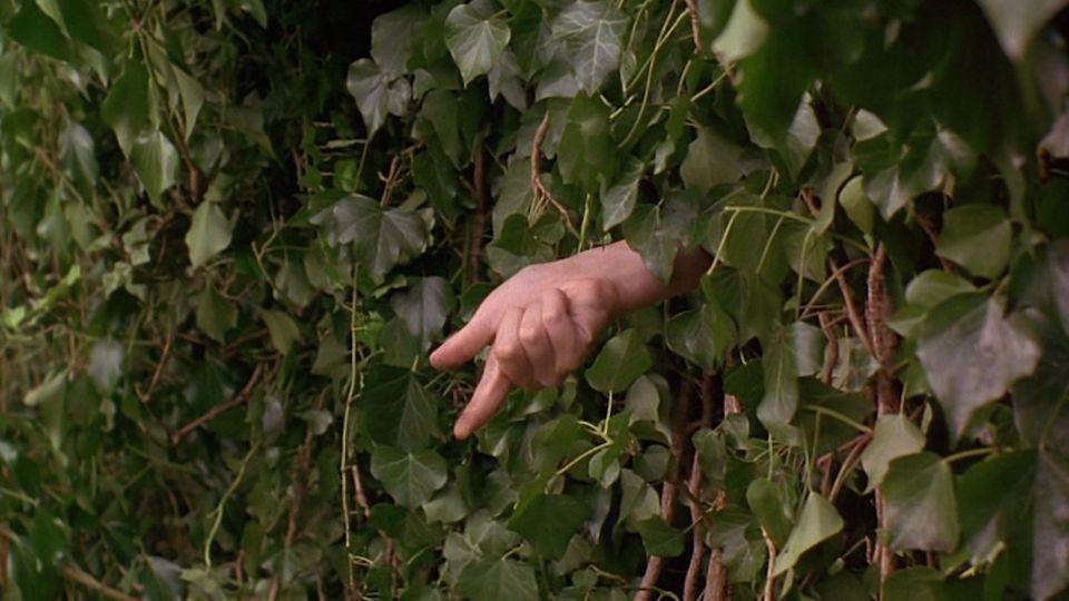 Affiches posters et images de le jardin secret 1994 for Le jardin secret film