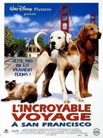 Affiche L'Incroyable Voyage à San Francisco