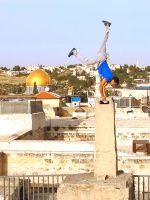 Affiche Derrière les fronts : résistance et résilience en Palestine
