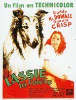 Affiche Fidèle Lassie