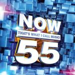 Pochette Now That's What I Call Music! 55