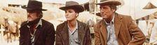 Cover Westerns vus