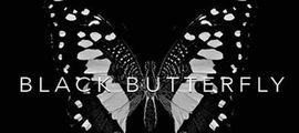 Illustration Papillon noir !!!