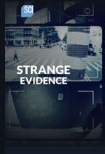 Affiche Strange Evidence