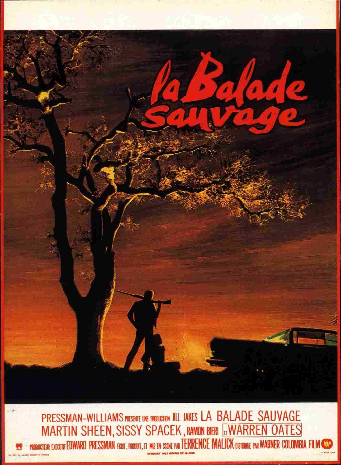 Image result for Balade sauvage affiche film