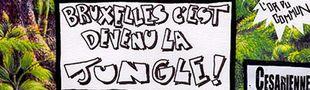 Cover Pourquoi le rap belge a gagné
