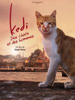 Affiche Kedi : Des Chats et des Hommes