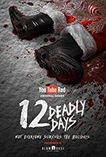 Affiche 12 Deadly Days