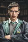 Affiche Voldemort: Origins of the Heir