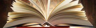Cover Les meilleurs essais littéraires