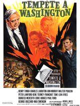 Affiche Tempête à Washington