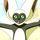 Avatar Newt23