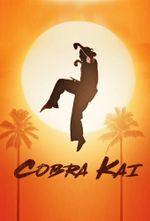 Affiche Cobra Kai
