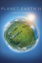 Affiche Planète Terre II