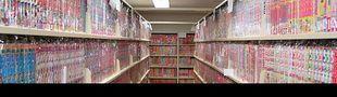 Cover P.A.L. spécial mangas