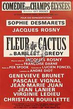 Affiche Fleur de cactus