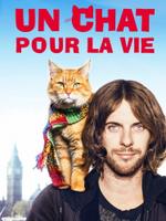 Affiche Un chat pour la vie