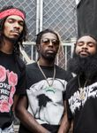 Logo Flatbush Zombies