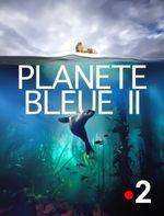 Affiche Planète bleue II